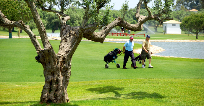 Spain Golf Courses | SanctiPetri Campano - Photo 2 Teetimes