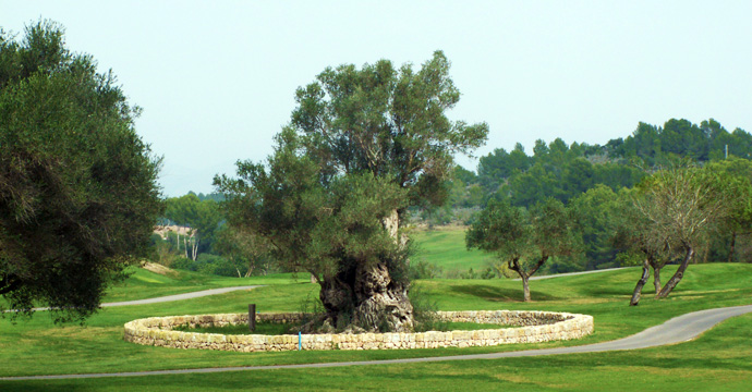 Spain Golf Son Muntaner Golf Course Two Teetimes
