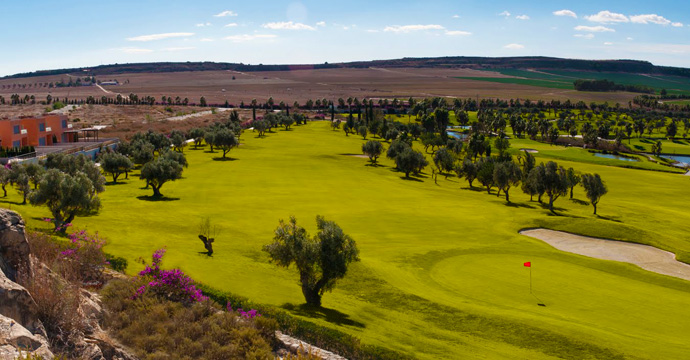 Spain Golf Courses | La Finca   - Photo 2 Teetimes