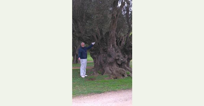 Vale da Pinta Golf Course Teetimes Golf Experience 4