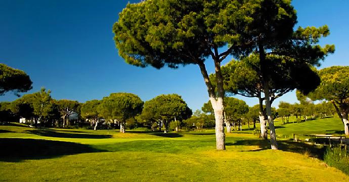 Vilamoura Golf Vilamoura Pinhal Golf Course - Photo 7