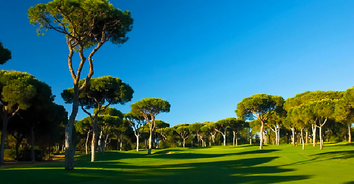Portugal Golf Courses | Vilamoura Millennium - Photo 7 Teetimes